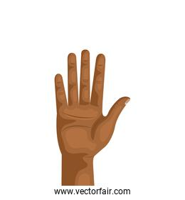 hand person human isolated icon