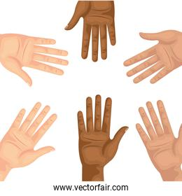 hands person human isolated icon
