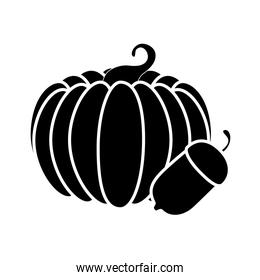 Isolated pumpkin and acorn vector design