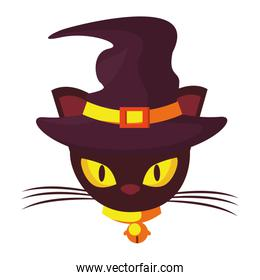 halloween cat with witch hat accessory