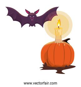 halloween pumpkin with candle and bat