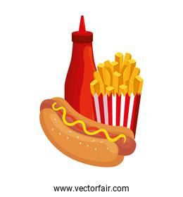 delicious hot dog with french fries and bottle sauce fast food icon
