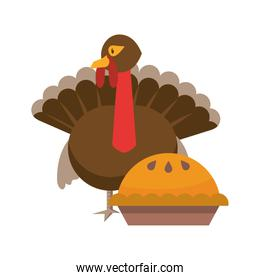 turkey bird animal thanksgiving character