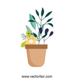 potted flower plant decoration isolated icon on white background