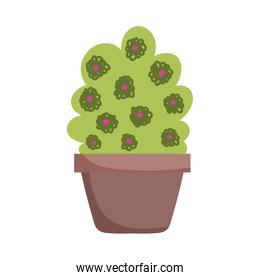 potted plant flowers decoration isolated icon on white background