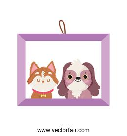 frame picture dogs pet isolated icon white background