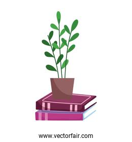 potted plant on stack books isolated icon white background