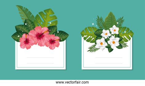 set of cards with flowers and leafs decoration