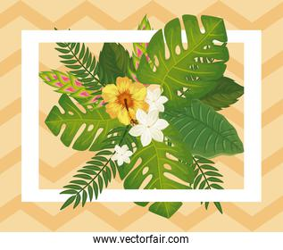 decoration of flowers with leafs tropicals nature