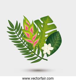 decoration of flowers with leafs tropicals