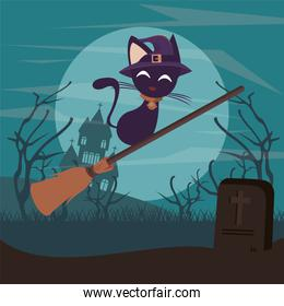 halloween dark scene with cat flying in broom