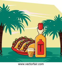 delicious tacos mexican food with tequila bottle