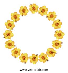 frame circular of flowers isolated icon