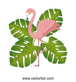 flamingo pink animal with leafs nature