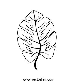 leaf nature tropical line style icon
