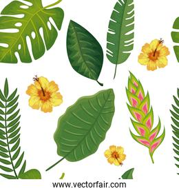 background of flower heliconia with leafs tropicals