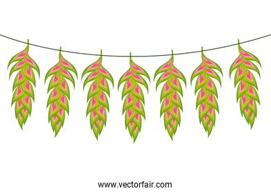 flowers heliconias hanging isolated icon