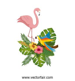 flamingo pink with parrot with flowers and leafs