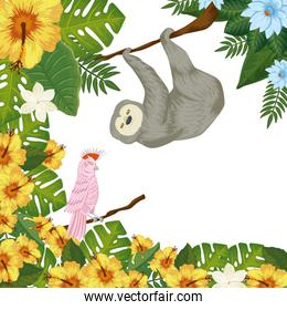 bear sloth hanging of branch with parrot pink and leafs