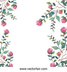 frame of flowers with branches and leafs decoration