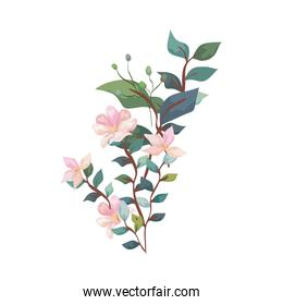 cute flowers with branches and leafs isolated icon