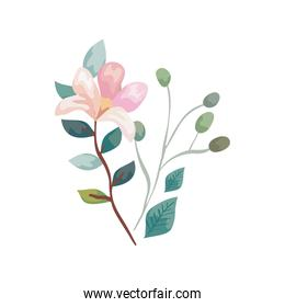 cute flower with branches and leafs isolated icon