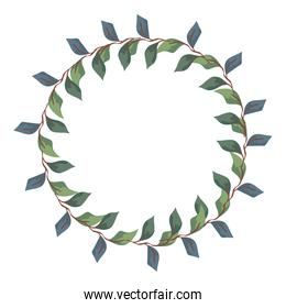 frame of branches with leafs nature decorative