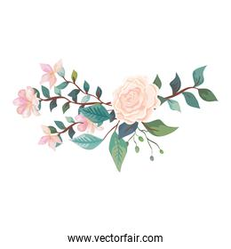 cute rose with flowers and leafs isolated icon