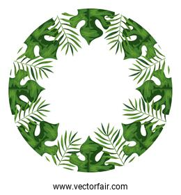 frame circular of branches with leafs
