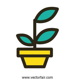 home plant on ceramic pot isolated icon