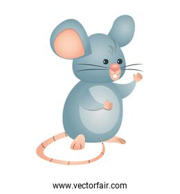 cute little mouse isolated icon