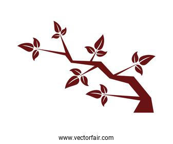 chinese tree branch natural icon