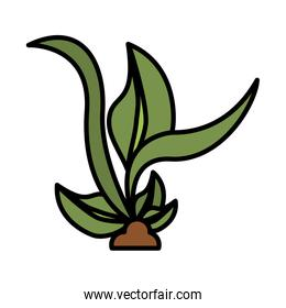 plant ecology cultivating isolated icon