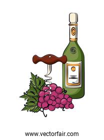 wine bottle with corkscrew and grapes fruits