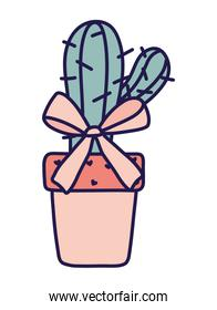 happy valentines day potted cactus bow love hearts