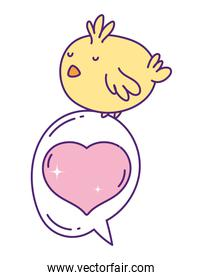 cute little chicken cartoon on love speech bubble heart