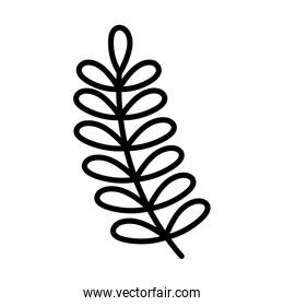 branch leaves foliage ecology, line style icon