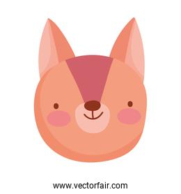 pretty squirrel face cartoon character on white background