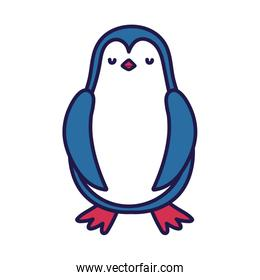 cute penguin standing cartoon character on white background