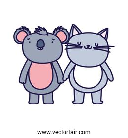 little cat and koala cartoon character on white background