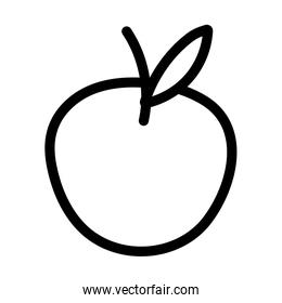 apple fresh fruit nutrition diet icon thick line