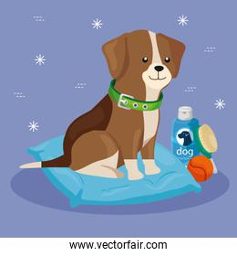 cute dog with cushion and icons for care