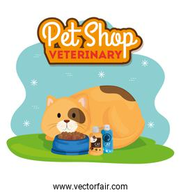 pet shop veterinary with cat and icons
