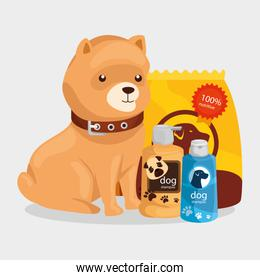 cute dog with bag food and icons for care
