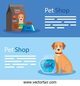 set poster of pet shop and icons