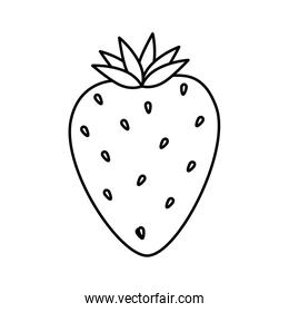 delicious strawberry fruit isolated icon