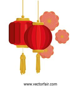lanterns chinese hanging with flowers isolated icon