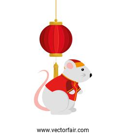cute rodent rat with decoration chinese hanging