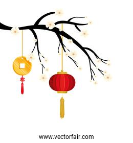 tree branch with lantern and decoration chinese