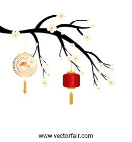 tree branch with lantern and decoration chinese hanging